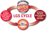 cycle of leaky gut